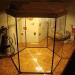 Сколько аквариум стоит